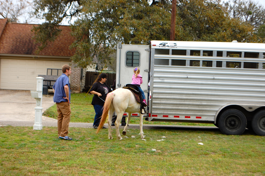 Audrey got to ride Diamond up into the trailer when it was time to go.