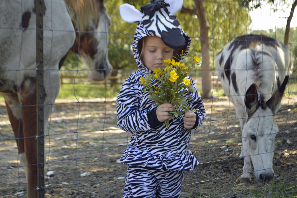 DIY zebra costume