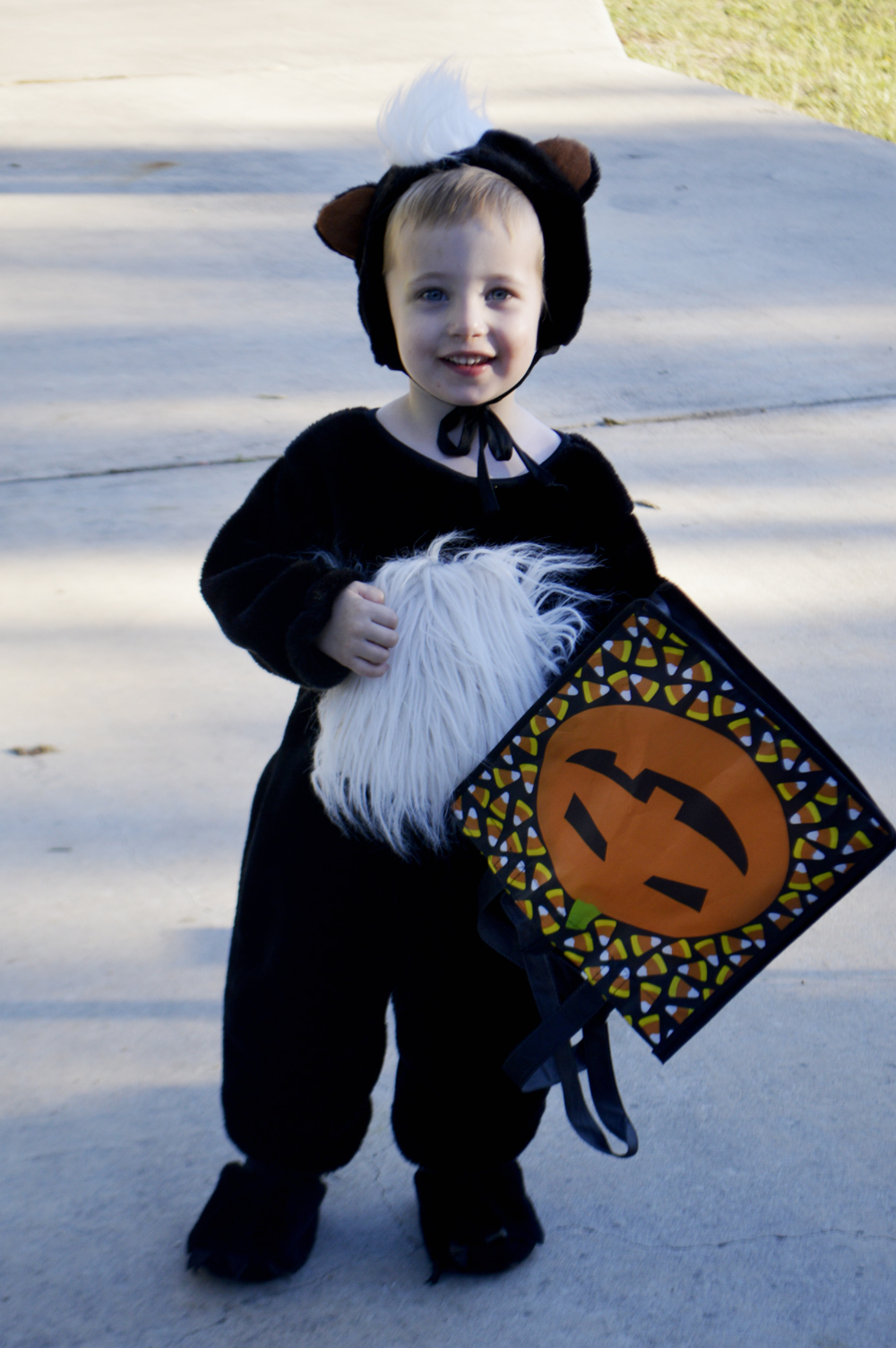 little skunk costume